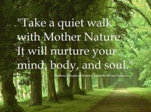 take-a-quiet-walk-with-mother-nature-it-will-nurture-your-mind-body-and-soul